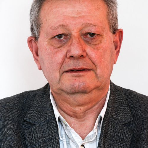Dr. Ing. BOT ADRIAN